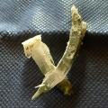 ヒマラヤ水晶原石特殊形状018