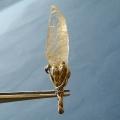 ヒマラヤ水晶ペンダント針金形状内包物048